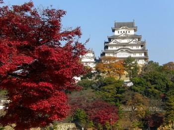 姫路城 紅葉 時期.jpg